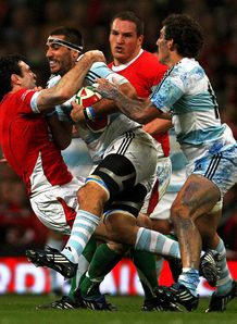 Stephen Jones Wales Argentina International Rugby Union