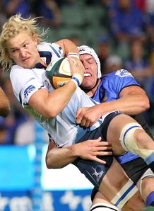 Dewald Potgieter Bulls v Force