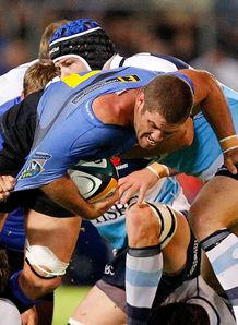 Matt Hodgson Western Force