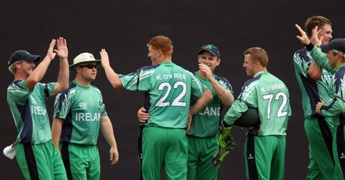 Emergence: Ireland were the surprise package at the last World Cup