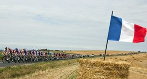 The 2010 Tour de France in pictures