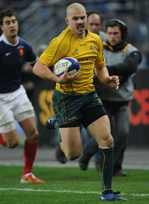 Wallabies run riot in Paris