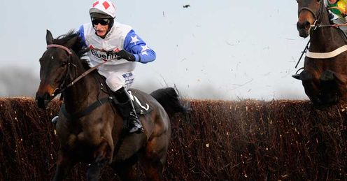Daryl Jacob riding Diamond Harry at Newbury in November