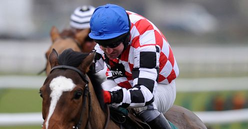 The Giant Bolster Cheltenham