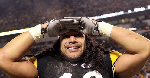 Troy Polamalu: Could play against Cincinnati after suffering a head injury