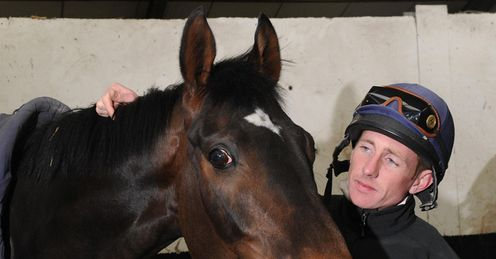 Our Joe Mac: a good each-way bet in the Winter Derby, says Alex