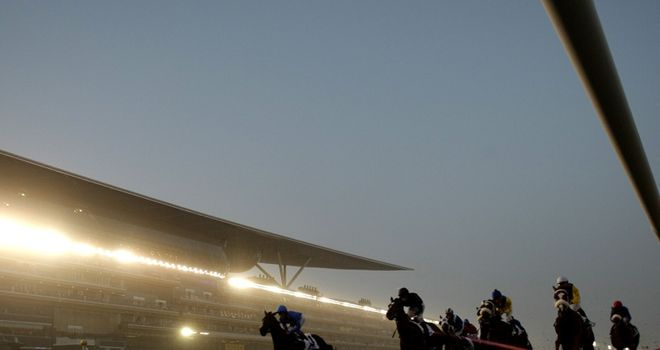 Probable fields for Dubai World Cup night released