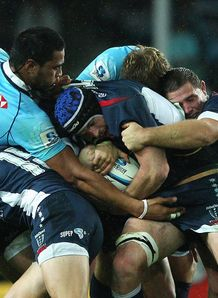 waratahs v rebels