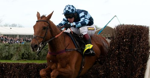 Wishfull Thinking will go up against Kauto Stone in the Tingle Creek