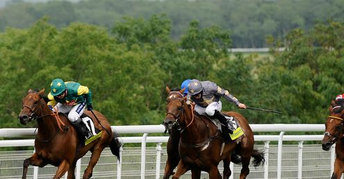 Boom and Bust: was 16th in the Hunt Cup