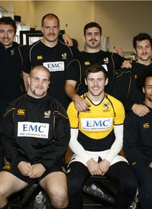 Wasps Movember