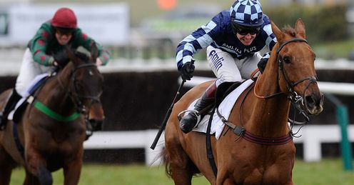 Wishfull Thinking: Good bet for the Victor Chandler Chase