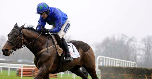 Hurricane Fly: expected to be a contender at the Cheltenham Festival