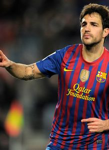 Picture of Cesc Fabregas