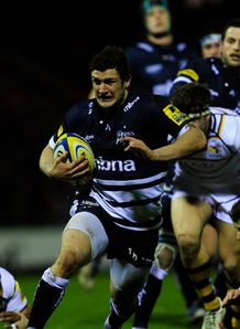 sale sharks Tom Brady