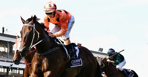 Black Caviar: Arrives at Ascot with high expectations
