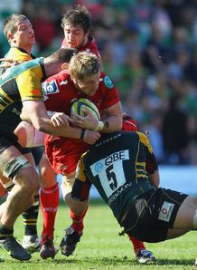 Dominic Day taking contact for Scarlets