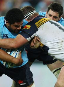 brumbies v tahs preview
