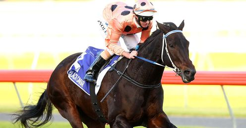 Black Caviar: Alex's banker for the Diamond Jubilee Stakes