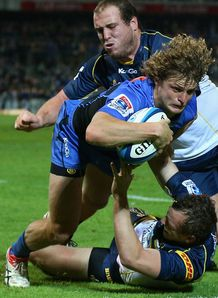 Nick Cummins Western Force
