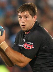 Willem Alberts Sharks