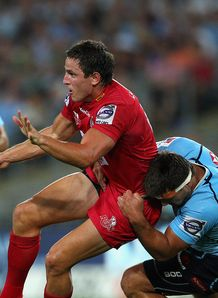 mike harris reds v waratahs preview