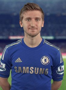 Picture of Marko Marin