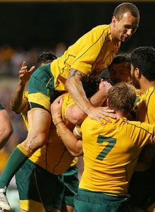 wallabies v boks