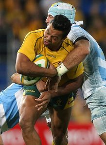 beale australia v pumas