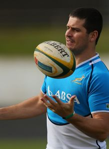 morne steyn