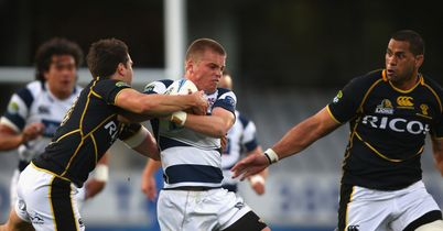 Anscombe named in Auckland squad
