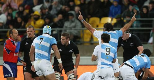 Argentina: holding their own in the the Rugby Championship