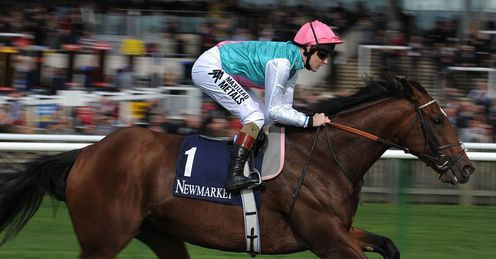 Frankel: heavy ground could work in his favour at Ascot, says Ed