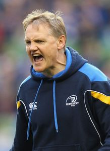 Joe Schmidt Leinster