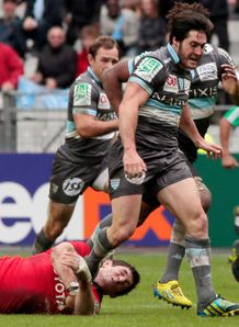 Racing metro scrum half Maxime Machenaud v Munster