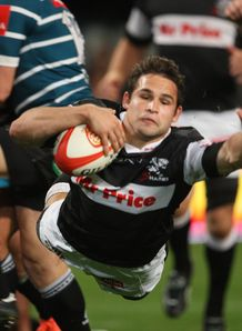 Reinach sharks