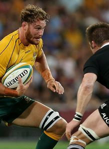 Scott Higginbotham Australia v New Zealand Bledisloe Cup