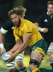 scott higginbotham australia wallabies