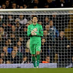 Lloris: Used sparingly by Spurs