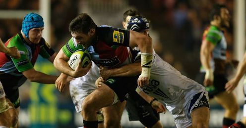 harlequins Tom Guest