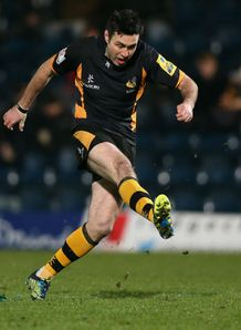 Stephen Jones Wasps