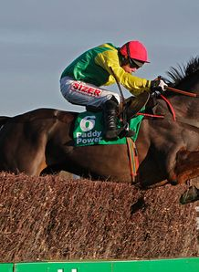 Sizing Europe survives scare to win Punchestown feature