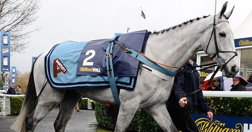 Simonsig: will run in the Game Spirit Chase at Newbury