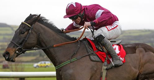 Sir Des Champs: Alex's hunch for the Gold Cup