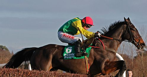  Sizing Europe - Leopardstown - 27/12/12
