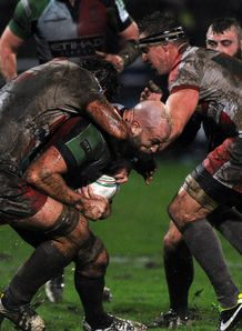 Harlequins s second row George Robson v Biarritz