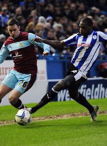 Championship: Sheff Wed v Brighton team news