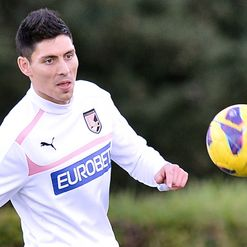 Faurlin: Training with Palermo
