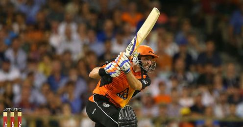 Michael Hussey �Perth Scorchers v Brisbane Heat�