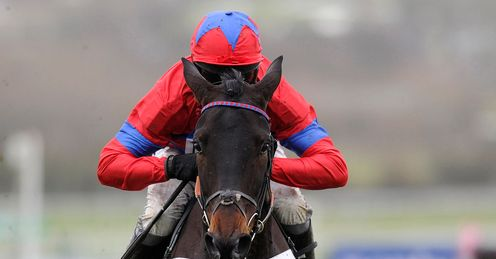 Sprinter Sacre: needs a rival to capture the imagination, says Ed